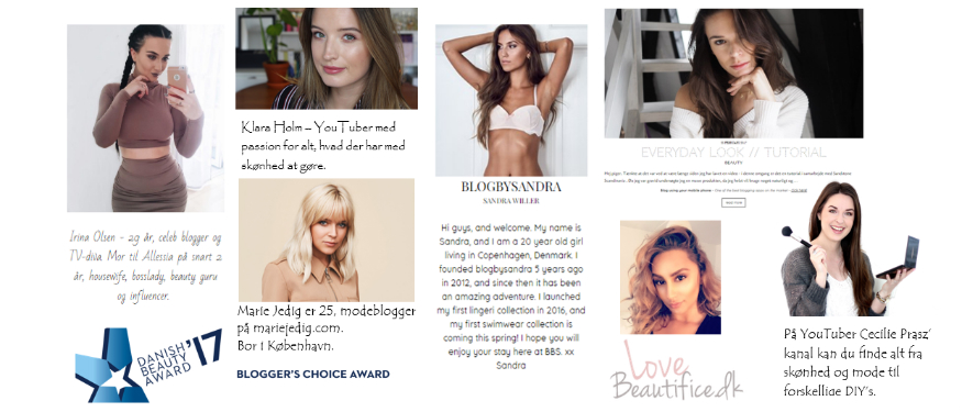 Blogger's Choice Award 2017